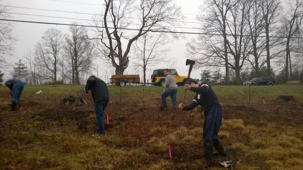 6-Digging holes, 2014