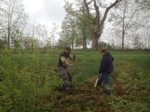 Members planting evergreens at Bull Pond.