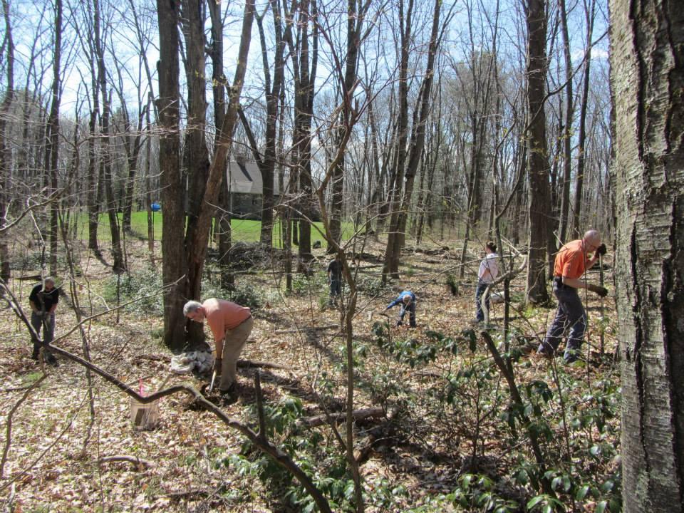 11-Planting crew
